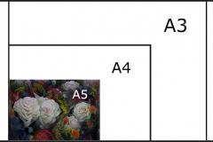 PRINT A5 (148.5 x 210mm)